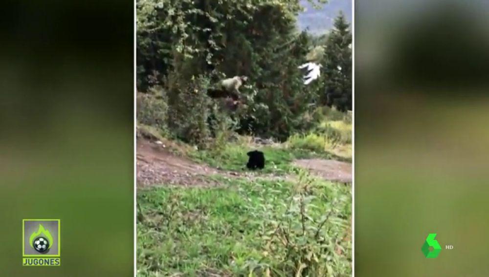 Un ciclista se encuentra con un oso y realiza un enorme salto para esquivarle