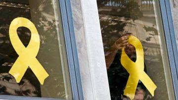 Trabajadores del Departamento de Agricultura de la Generalitat retiran los lazos