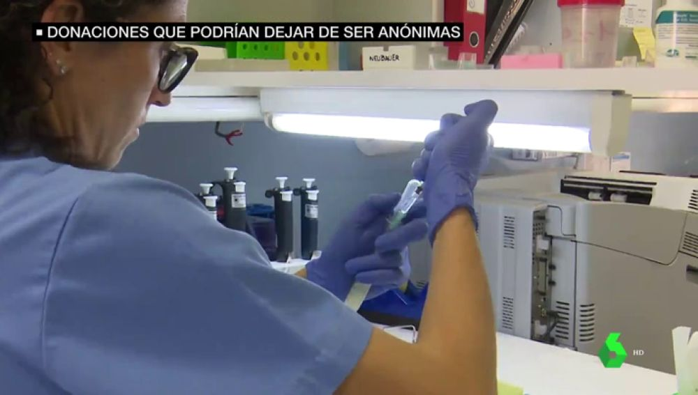 ADN con nombres y apellidos: los donantes de óvulos y esperma podrían abandonar el anonimato