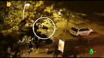 El momento en el que un hombre es arrastrado por una riada en Arenys de Mar