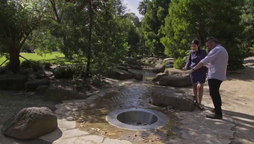 Un parque artificial para reciclar la lluvia: la medida para ahorrar el 60% de agua destinada al riego