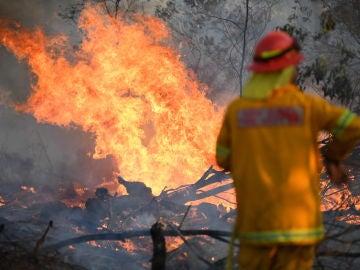 Un bombero trabaja en la extinción de uno de los incendios forestales del este de Australia