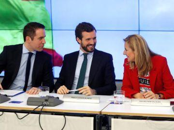 Pablo Casado en la reunión del Comité Ejecutivo Nacional