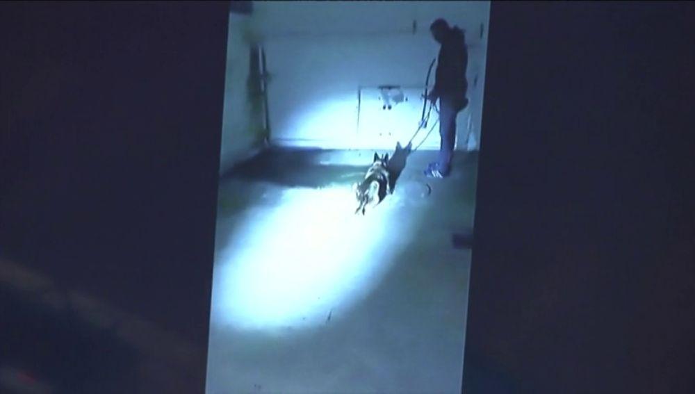Sale a la luz el vídeo del momento en el que hallaron el cadáver de Diana Quer