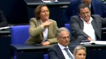 El polémico gesto de la diputada Beatrix von Storch