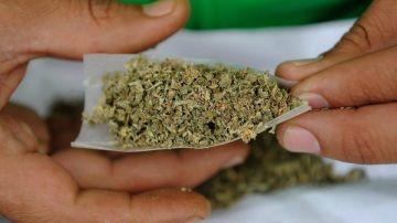 Cannabis en papel de fumar