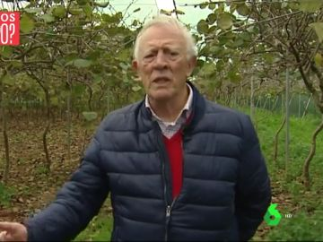 Vicente Borrás, agricultor ecológico