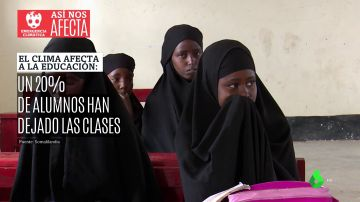 Cuando el clima afecta a la educación: un 20% de los niños en Somalilandia abandonan los estudios por la emergencia climática
