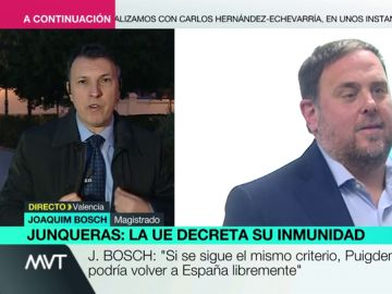 "Joaquim Bosch, contundente tras el fallo de Junqueras: """