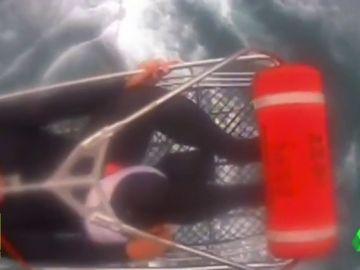 El espectacular rescate a un surfista atacado por un tiburón en California