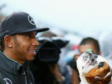 Lewis Hamilton, con su perro Roscoe en una foto de archivo