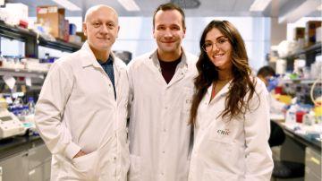 Andrés Hidalgo, Jose María Adrover y Alejandra Aroca, investigadores de este estudio