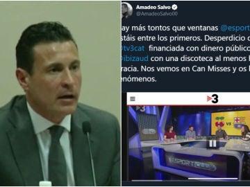 El tuit de Amadeo Salvo contra TV3