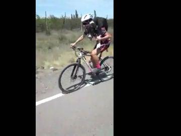 Un ciclista salva a un perro de morir de hambre y sed