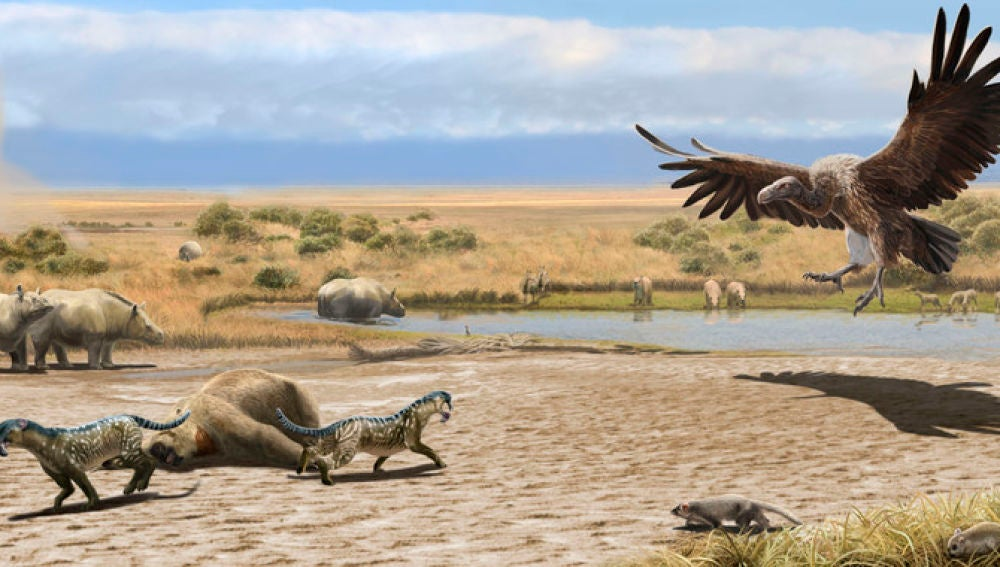 Reconstrucción del ecosistema existente en la región pampeana argentina hace aproximadamente 8 millones de años (Mioceno final). Los fósiles de las especies mostradas han sido hallados en el yacimiento de Salinas Grandes de Hidalgo junto a otros yacimientos cercanos en la provincia de La Pampa. / Ilustración: Oscar Sanisidro.