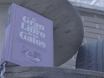'El gran libro de los gatos'