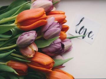 Las mejores frases para el Día de San Valentín