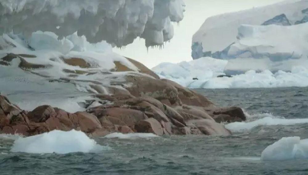Image result for por el deshielo aparece isla la antártida