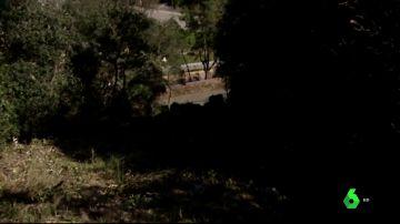 Mueren dos personas al caer 30 metros en un accidente de tráfico en Lloret de Mar