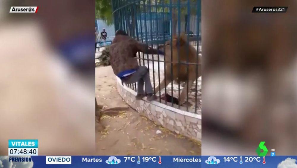 leon ataque
