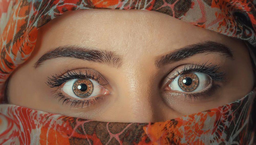 Identifican un circuito de regulacion inmunologica que podria provocar inflamaciones oculares