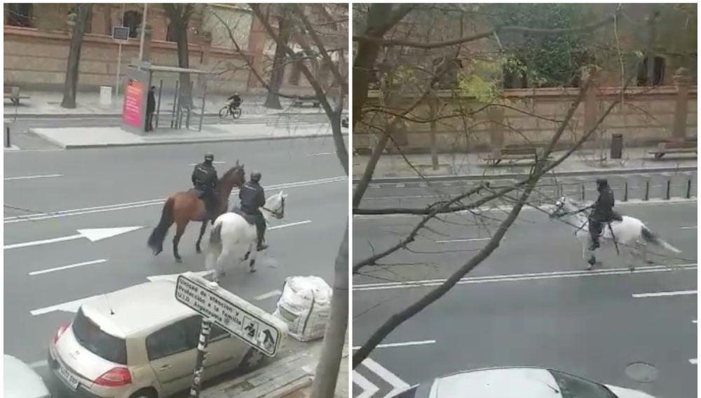La Policía persigue a caballo a un ciclista