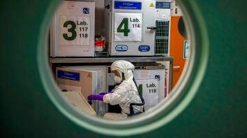 Un trabajador en el laboratorio de alta seguridad en el Centro Nacional de Biotecnología, en Madrid