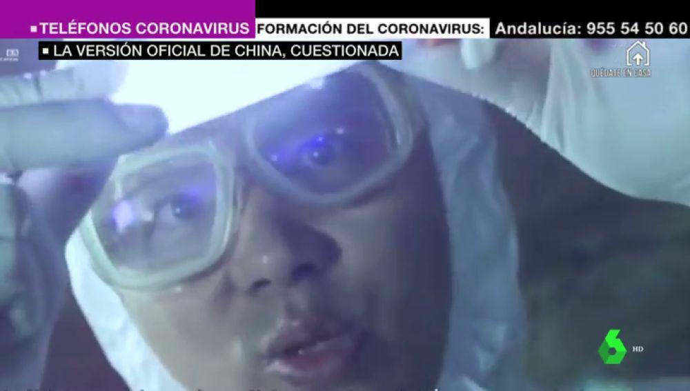 Las imágenes de un investigador del laboratorio de Wuhan experimentando con murciélagos en 2017 avivan la polémica sobre el origen del coronavirus