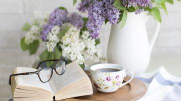 Día del Libro 2020: 6 libros para leer durante el confinamiento