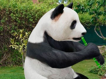 Oso panda virtual