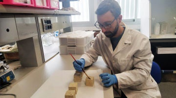 Nanoparticulas con puntos cuanticos para restaurar monumentos