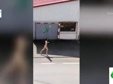 La persecución de la Policía a un joven corriendo desnudo en un pueblo de Asturias en pleno estado de alarma