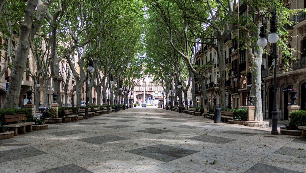El céntrico Paseo del Borne, en Palma de Mallorca