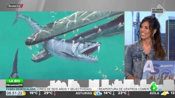 Descubren una anchoa gigante de 30 centímetros y dientes de sable
