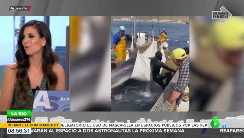 Unos pescadores rescatan a un delfín de 200 kilos atrapado en una almadraba en Murcia