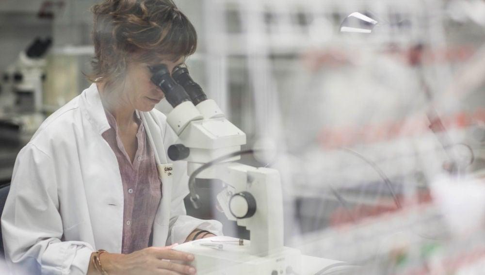 Investigadoras espanolas estudian que pasa si el coronavirus se junta con el parasito de la malaria