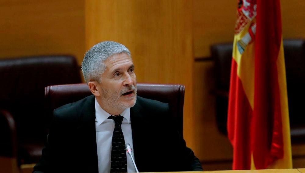 Fernando Grande-Marlaska, en el Senado