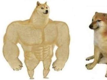 'Swole Doge vs. Cheems'