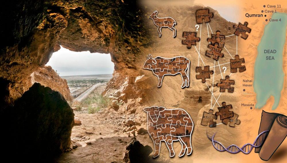 El ADN de los Rollos del Mar Muerto desvela algunos de sus secretos