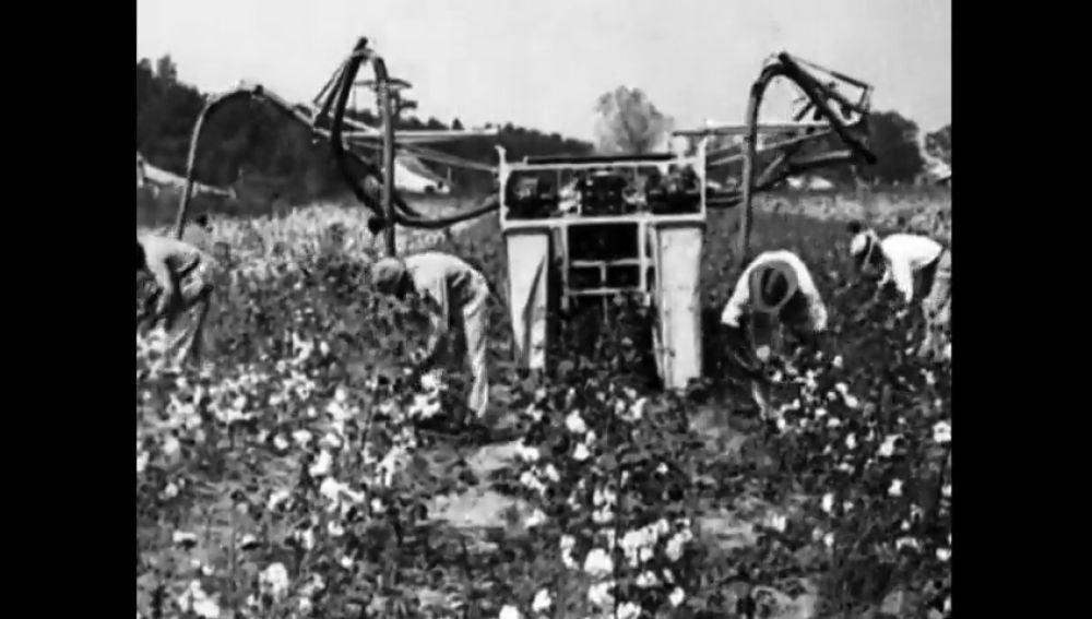 El racismo en Estados Unidos a través de la historia: de los esclavos del algodón a los ataques del Ku Klux Klan