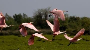 Quebrada de los Cuervos, Uruguay