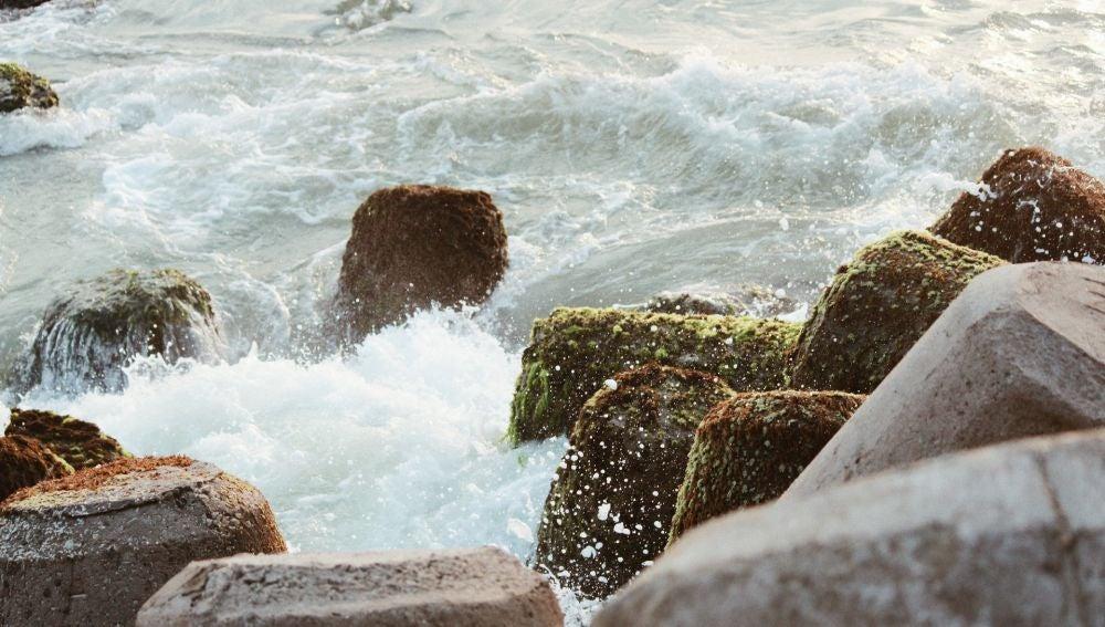 El agua del mar no tiene olor por sí sola