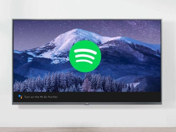 Android TV Spotify