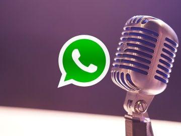 Notas de voz WhatsApp