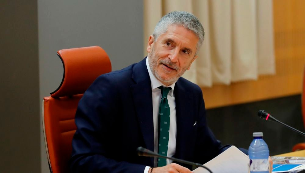 Fernando Grande-Marlaska, ministro del Interior