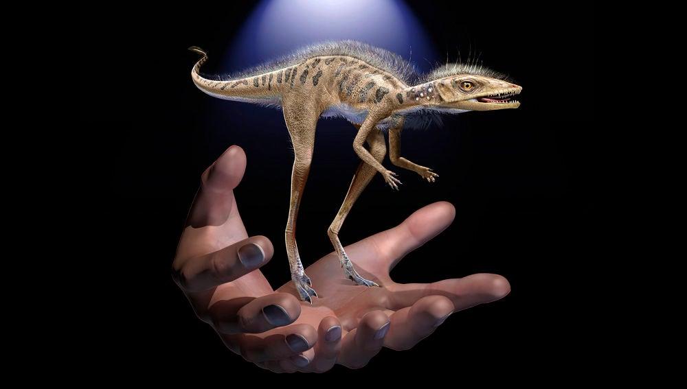 Descubierto un minusculo pariente de los dinosaurios