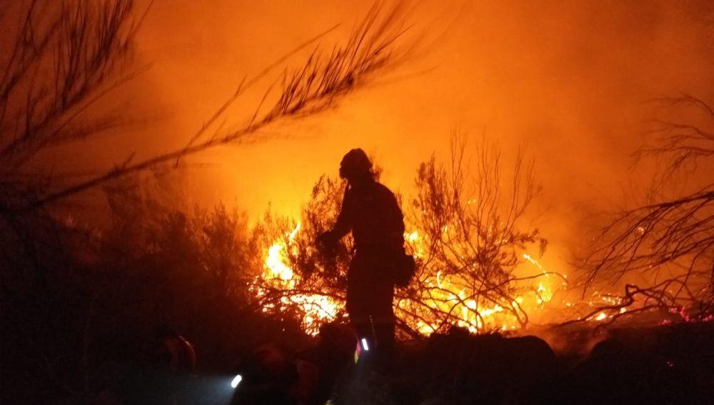 La UME en el incendio forestal de Monterrei
