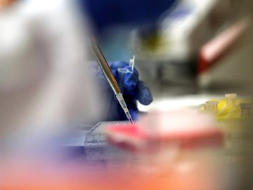 Laboratorios y universidades del mundo están en carrera para producir una vacuna que contrarreste al nuevo coronavirus.