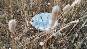 Imagen de una mascarilla arrojada en el campo