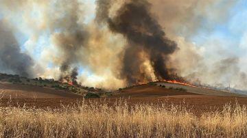 Incendio en Valdepiélagos